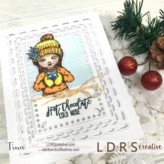 LDRS 11