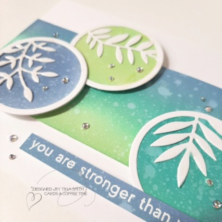 Spellbinders DOM FEB20_Tina Smith_5