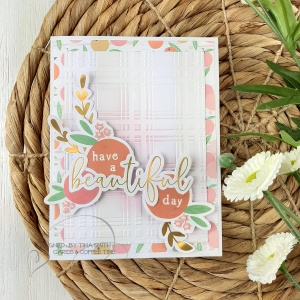 10 Cards -1 Kit by Tina Smith with the Spellbinders Card Kit of the Month for Apr 2020 - Weekend Fun 9