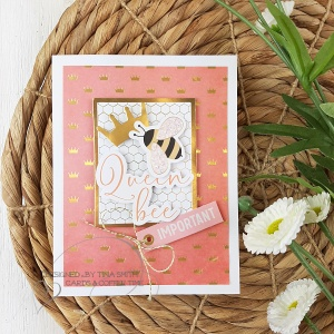 10 Cards -1 Kit by Tina Smith with the Spellbinders Card Kit of the Month for Apr 2020 - Weekend Fun 5